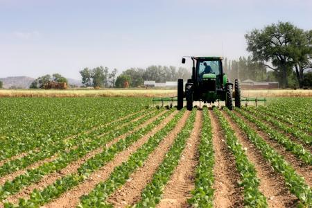 От 17 октомври започва подаването на заявления за държавна помощ за газьол за земеделие